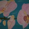 Orchidee hell, 50x60cm, Acryl auf Leinwand