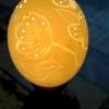 Straußenei 11 - als Lampenschirm geschliffen und gelocht- Motiv: Vogel , Bild 2
