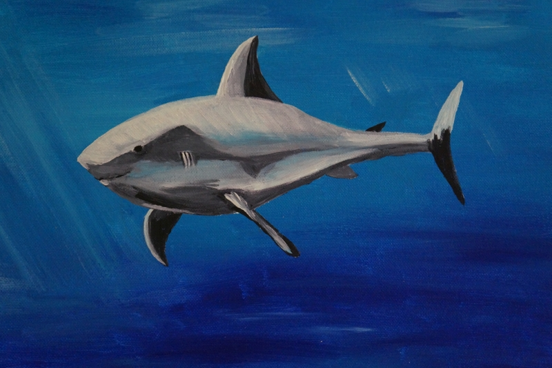 Hai, 30x24cm, Acryl auf Leinwand