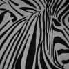 Zebra, 70x100cm, Acryl auf Leinwand